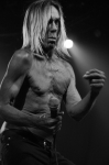 iggy_and_the_stooges-06