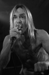 iggy_and_the_stooges-08